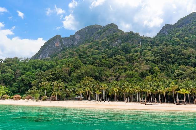Isola filippina con palme verdi, spiagge bianche e limpide e acque turchesi e cristalline e la roccia