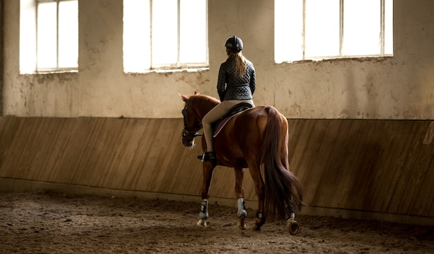 Foto dal retro di una donna che fa passeggiate a cavallo nel maneggio