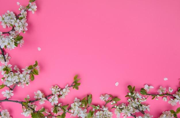 Foto dell'albero del fiore di ciliegia bianco della molla sulla superficie rosa pastello