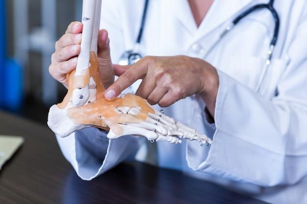 Fisioterapista che tiene un modello di piedi scheletro