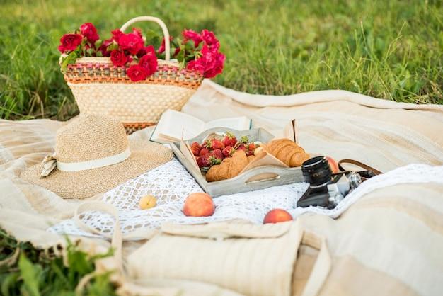 Picnic sul campo del villaggio. cappello, fotocamera retrò. frutta fresca e fiori naturali in un cesto. all'aperto, rilassarsi in vacanza