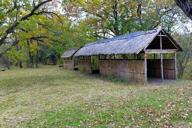 Area picnic nella foresta autunnale