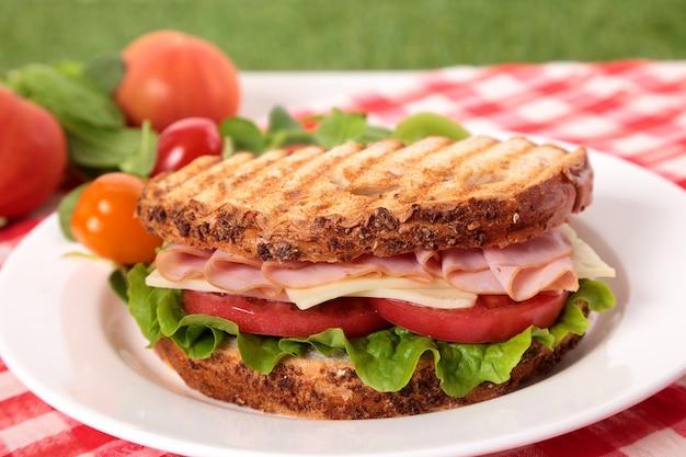 Picnic tostato prosciutto e formaggio sandwich sul tavolo all'aperto