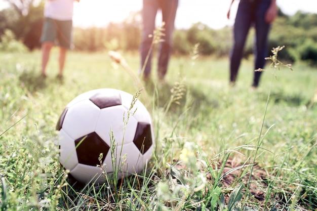 Un'immagine della palla che si trova nell'erba. ci sono membri di una famiglia che ci giocano. sono pronti a spingere la palla. stanno giocando sul prato.
