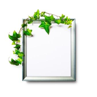 Cornice per foto con foglie di edera verde isolato su sfondo bianco percorso di ritaglio incluso