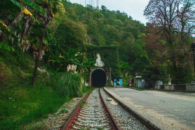 La pittoresca stazione ferroviaria abbandonata psyrtskha in autunno. abkhazia, nuovo athos