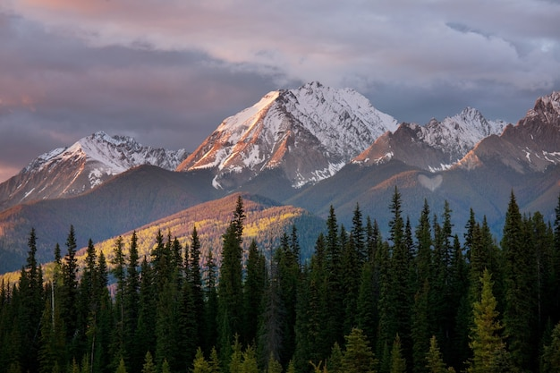 Pittoresca vista sulle montagne delle montagne rocciose canadesi nella stagione estiva