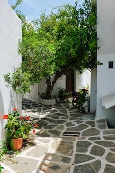 Via pittoresca della città di naousa sull'isola di paros, grecia