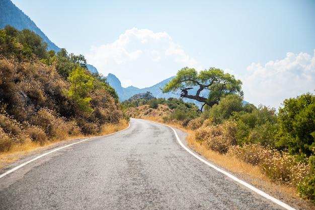 Una pittoresca stradina lastricata nel parco nazionale di termessos in turchia.