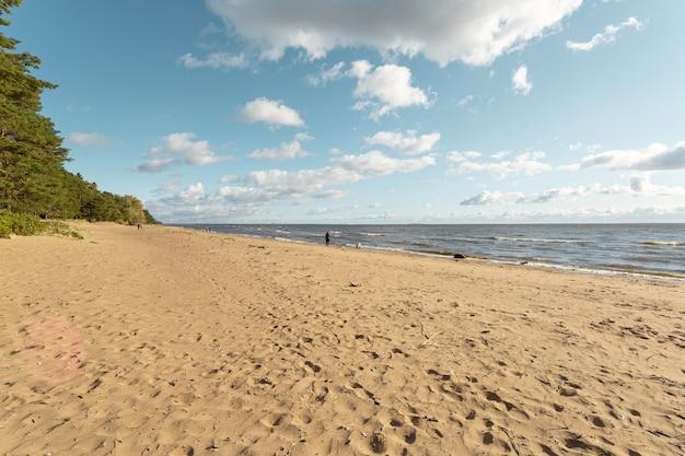 Pittoresca spiaggia di sabbia con cielo nuvoloso a komarovo, san pietroburgo, russia.