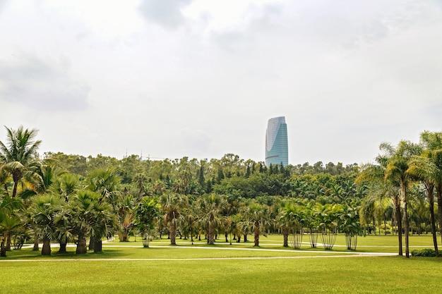 Pittoresco parco tropicale nel centro della metropoli, cina, shenzhen