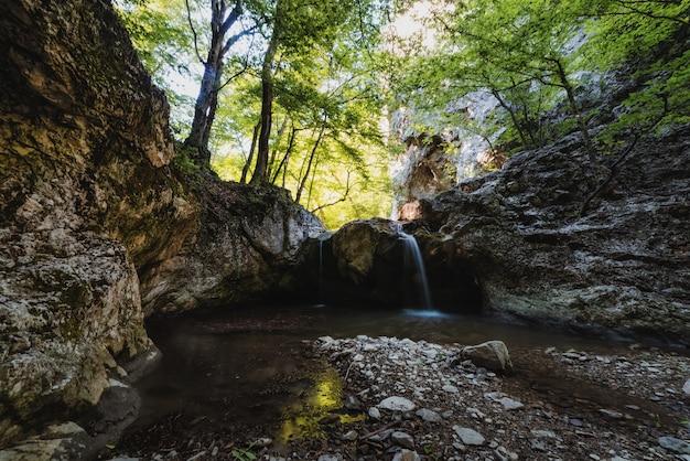 Cascata pittoresca nella foresta su un fiume di montagna