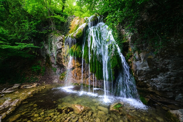 Cascata pittoresca in una lussureggiante foresta estiva verde
