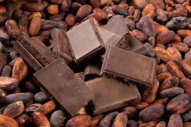 Pezzi di cioccolato su fave di cacao crude.
