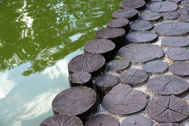 Pier vicino all'acqua da alberi di legno abbattuti
