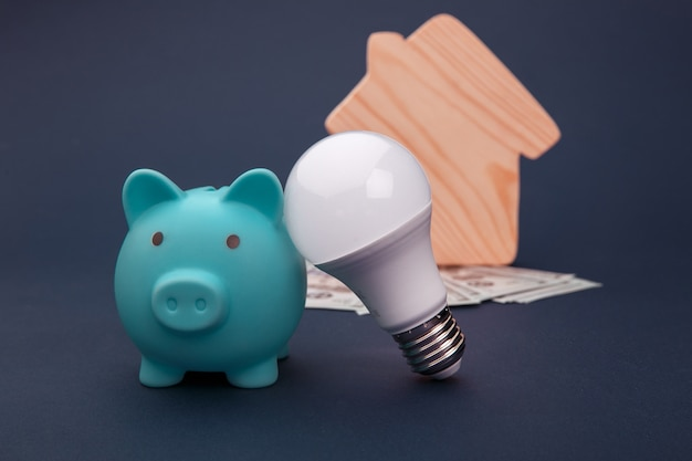 Salvadanaio, banconote in denaro e lampadina a led