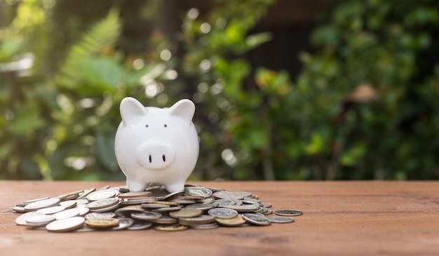 Il salvadanaio e le monete dei soldi si accumulano sulla tavola di legno con la natura