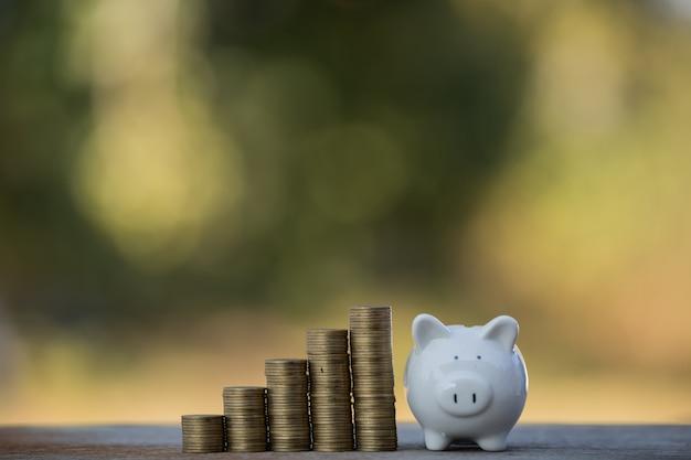 Salvadanaio maiale moneta risparmio di denaro concept