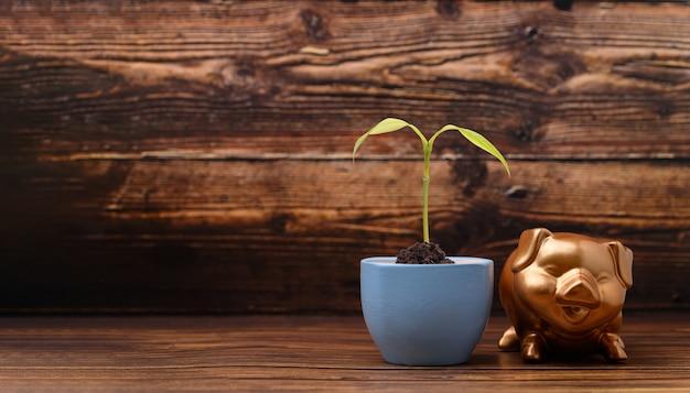 Salvadanaio che mostra risparmi, reddito, investimenti, azioni