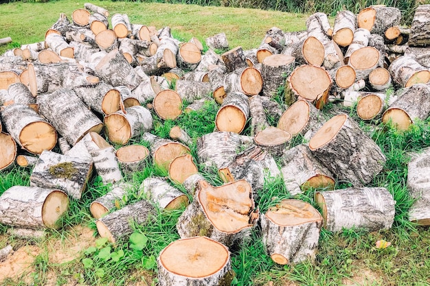 Catasta di legna da ardere tritata betulla all'aperto.