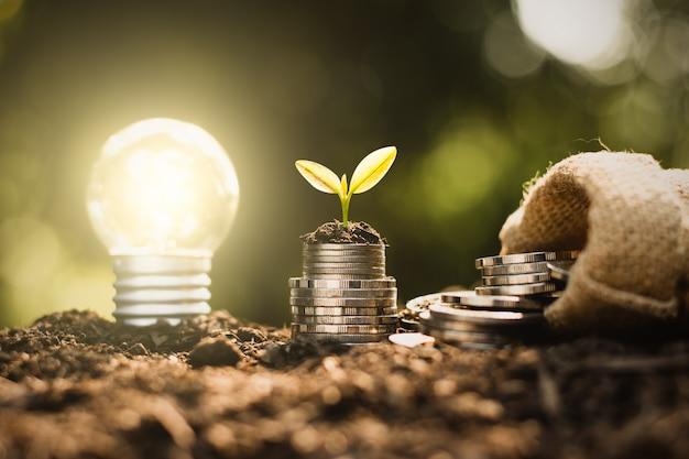 Mucchio di monete con pianta e lampadina