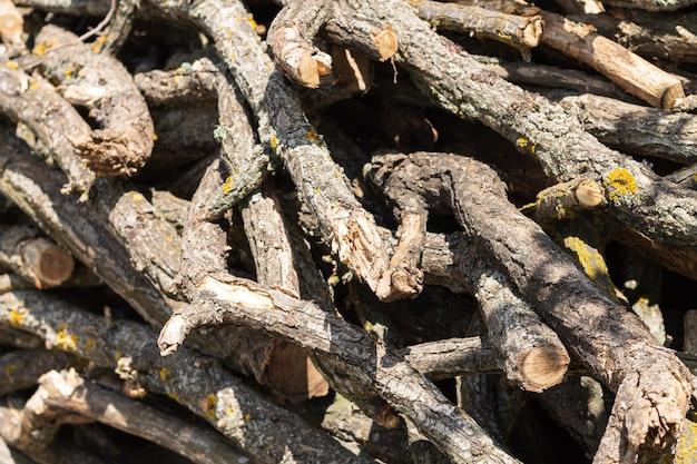 Mucchio di rami di alberi secchi per caminetto o falò