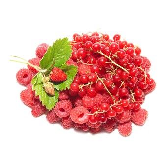 Pila di frutti isolati