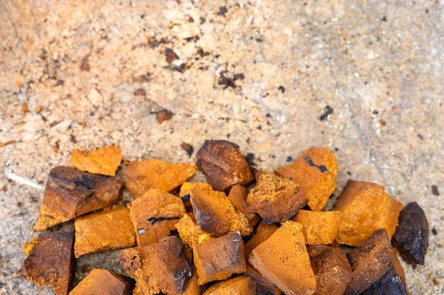 I pezzi del mucchio di fungo di betulla del fungo di chaga tritato e sbucciato sono impilati su un fondo di legno del ceppo. passo dopo passo. spazio per il testo