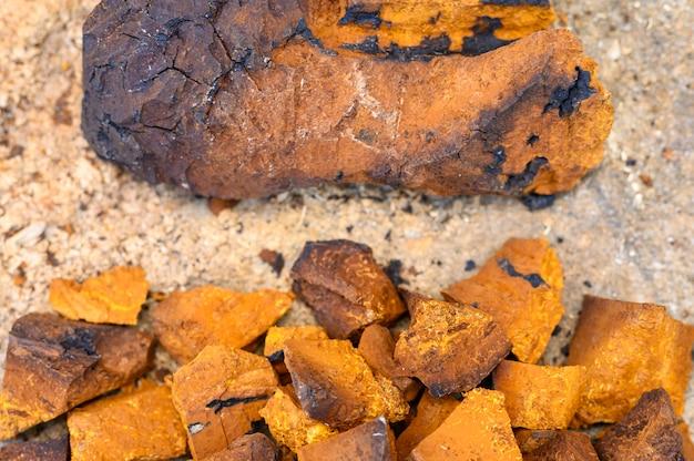 I pezzi del mucchio di fungo di betulla del fungo di chaga tritato e sbucciato sono impilati su un fondo di legno del ceppo. passo dopo passo
