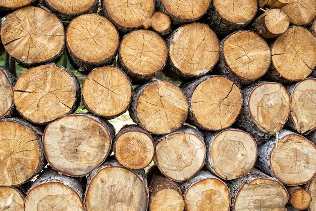 Fondo di legno segato naturale impilato mucchio dei ceppi