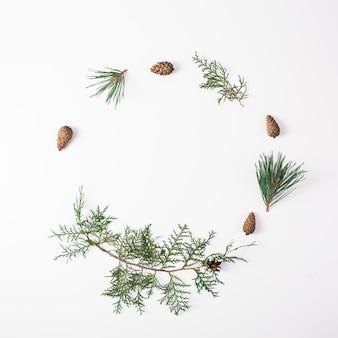 Ramo di pino con cono su uno sfondo bianco per decorazioni natalizie