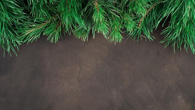 Rami di pino su uno sfondo marrone