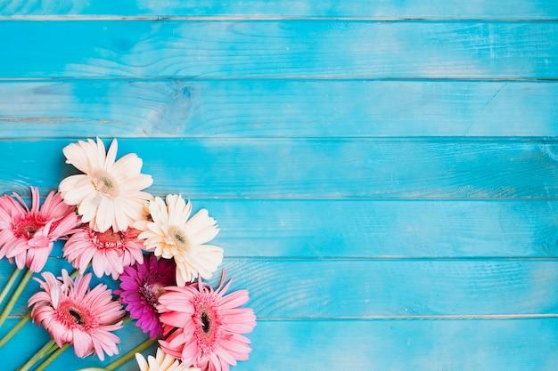 Mazzo rosa sul tavolo blu