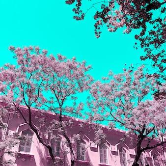Disegno di colori rosa. posizione urbana. concetto di viaggio di moda. spagna