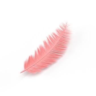 Piuma rosa con foto di sfondo bianco