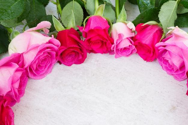 Bordo di boccioli di fiori di rosa fresca rosa su bianco
