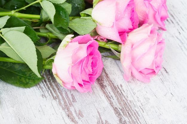 Rose fresche rosa in gocce d'acqua su bianco