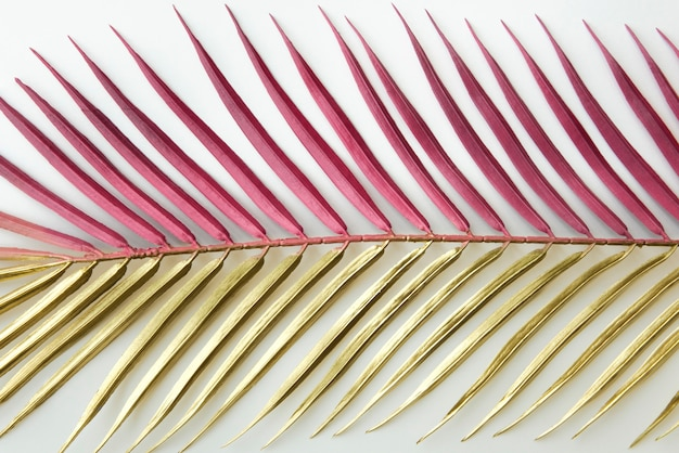 Sfondo foglia di palma rosa e oro