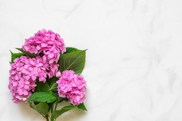 Bouquet di fiori di ortensie rosa su bianco