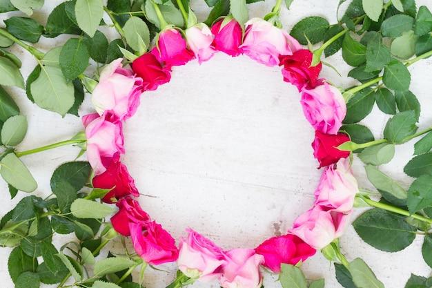 Bordo delle rose fresche rosa e mageta su bianco