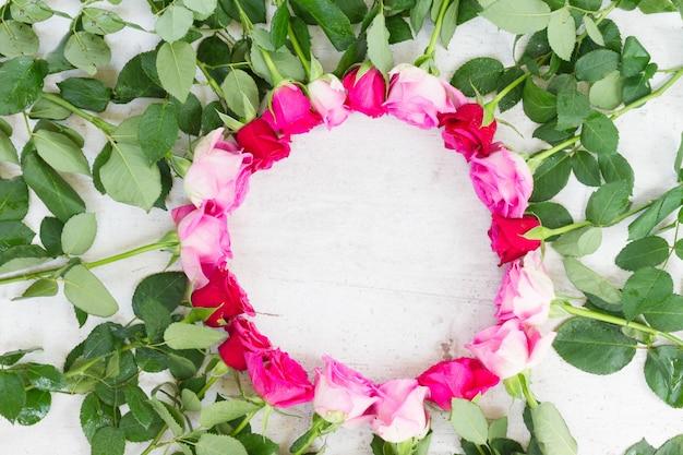 Cornice di rose fresche rosa e mageta su bianco