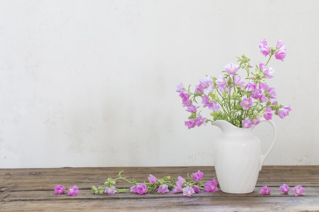 Malva rosa in brocca bianca su bianco