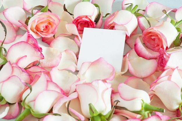 Sfondo floreale rosa pallido con rose e vuoto vuoto