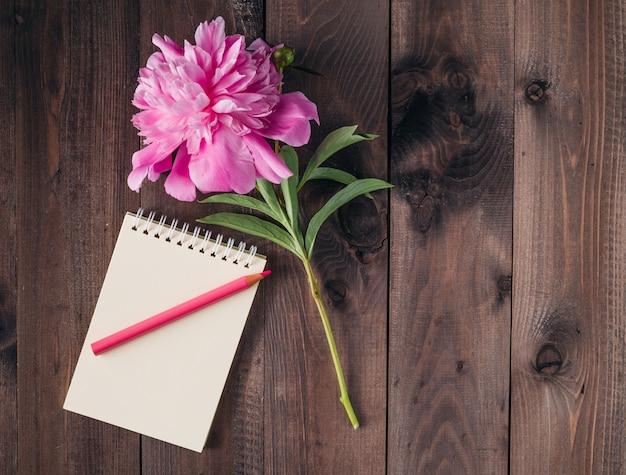 Fiore rosa della peonia su fondo di legno rustico scuro con lo spazio della copia per il messaggio accogliente.