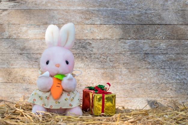Coniglio rosa indossa un vestito e tiene una carota con una scatola regalo colorata su un tavolo di legno wooden