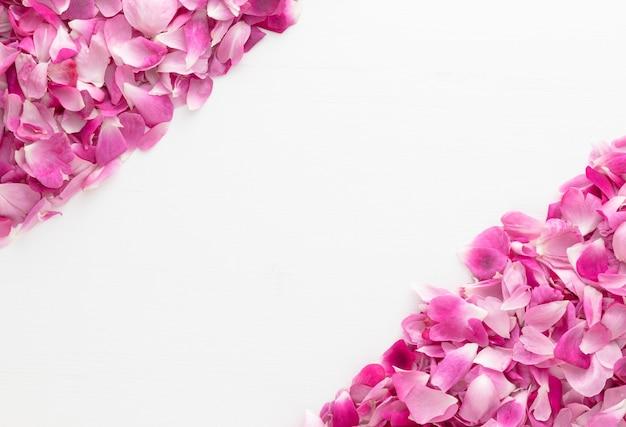 Petali di rosa rosa posti negli angoli su un tavolo di legno bianco con spazio per le copie