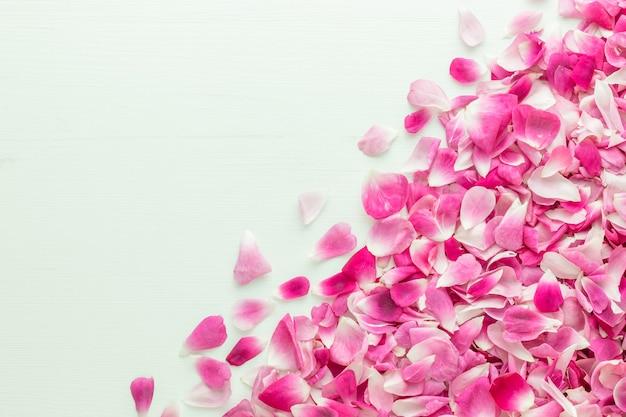 Petali di rosa rosa nell'angolo in basso a destra su fondo di legno bianco