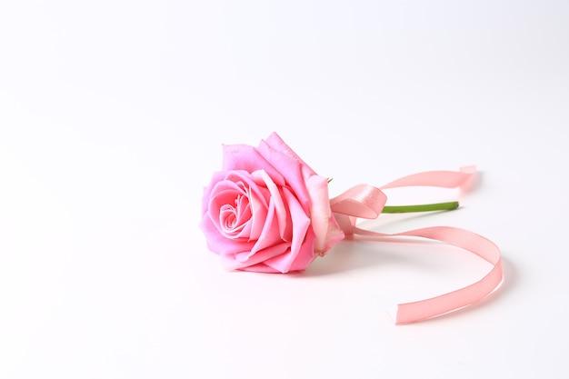 Rosa rosa con nastro rosa isolato su sfondo bianco.
