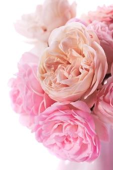 Primo piano del mazzo delle rose rosa in vaso su bianco