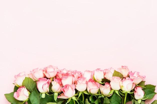 Bordo di fiori di rose rosa su sfondo rosa. san valentino, festa della mamma e festa di compleanno